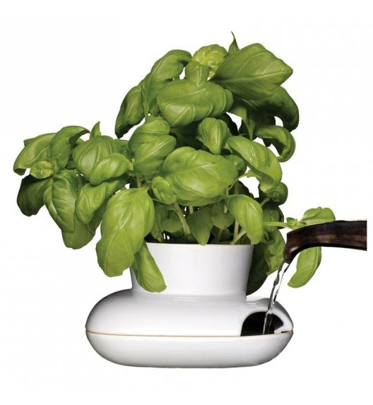SAGAFORM KITCHEN Biały wazon na zioła 8,6 cm / FreeForm